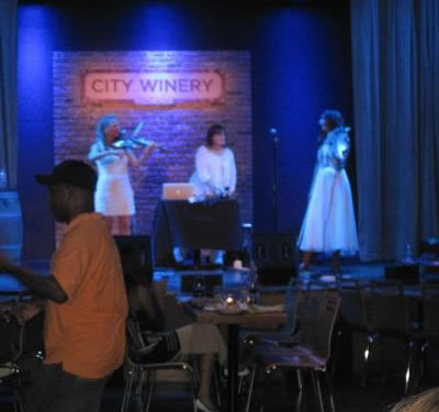Deep Blue Field performs at the new Chicago City Winery at Randolph & Racine.
